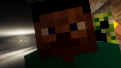 Coffin meme steve minecraft