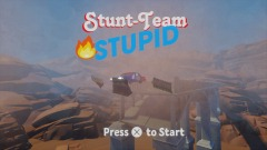 Stunt-Team Stupid