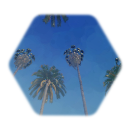 Gameplay Freindly Canary Island Date Palm