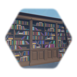 Library Bookshelf with ladder