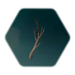 Bare Tree Branch
