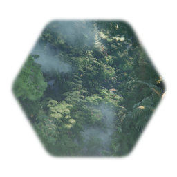 Tropical Forest Remixable Template