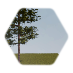Realistic Forest Tree Optimized