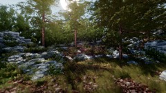 Realistic Forest 2