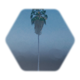 Gameplay Freindly Mexican Fan Palm